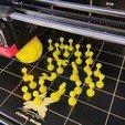 IMG_20200325_154603.jpg Download free STL file CoviDisNeuf • 3D printing design, Luckyco