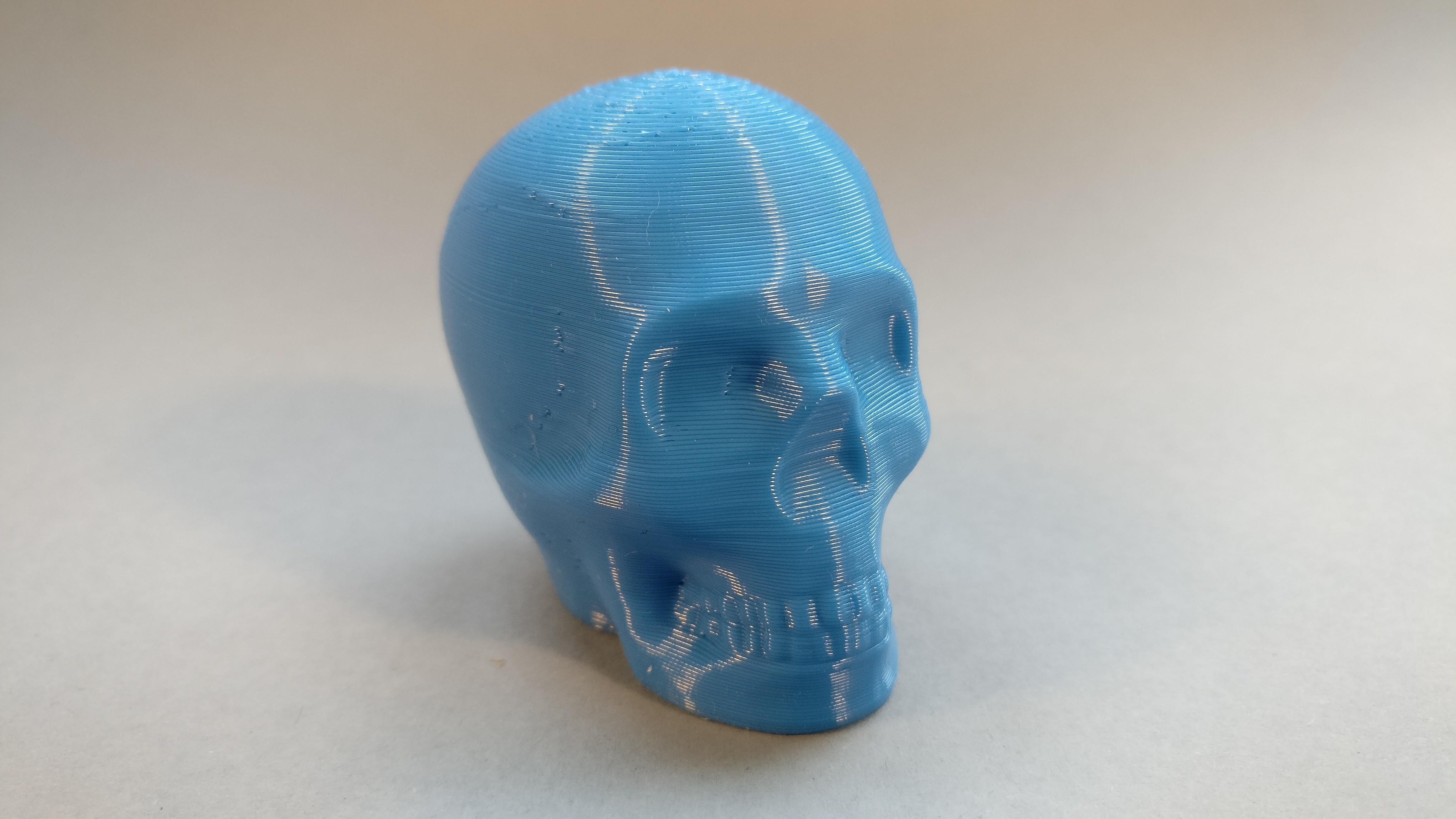 2017-01-10 15.53.53.jpg Télécharger fichier STL gratuit Riley Crâne imprimable • Design pour impression 3D, macouno