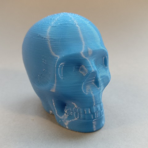Free 3d printer model Riley the printable Skull, macouno