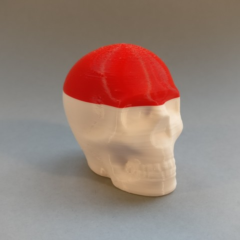 2017-01-10 15.53.34.jpg Télécharger fichier STL gratuit Riley Crâne imprimable • Design pour impression 3D, macouno