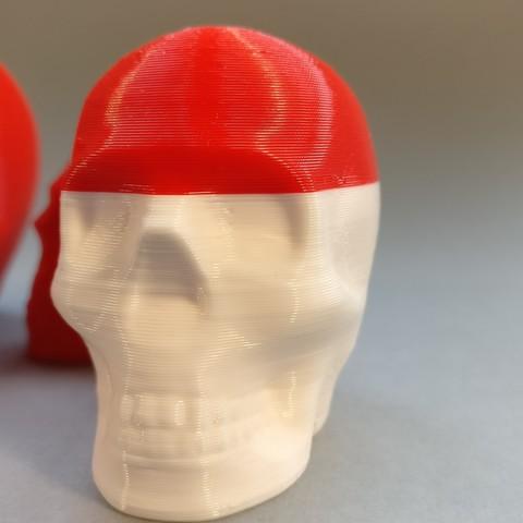 2017-01-10 15.55.46.jpg Télécharger fichier STL gratuit Riley Crâne imprimable • Design pour impression 3D, macouno