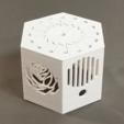 Download free OBJ file Fairy Music Box • 3D printer model, Zippityboomba