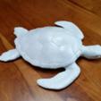 Descargar archivo 3D gratis Toda la Lotta Honu, Zippityboomba
