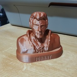 Télécharger fichier imprimante 3D Johnny Hallyday Buste , Matt5