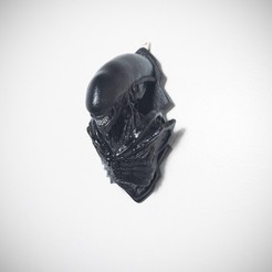Download free 3D printer designs Xenomorph Bust Wall Mount, Nello