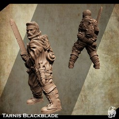 3d-printable-warrior-miniature-2.jpg Download STL file Support Free Warrior Miniature Tarnis Blackblade • 3D printer model, Nello