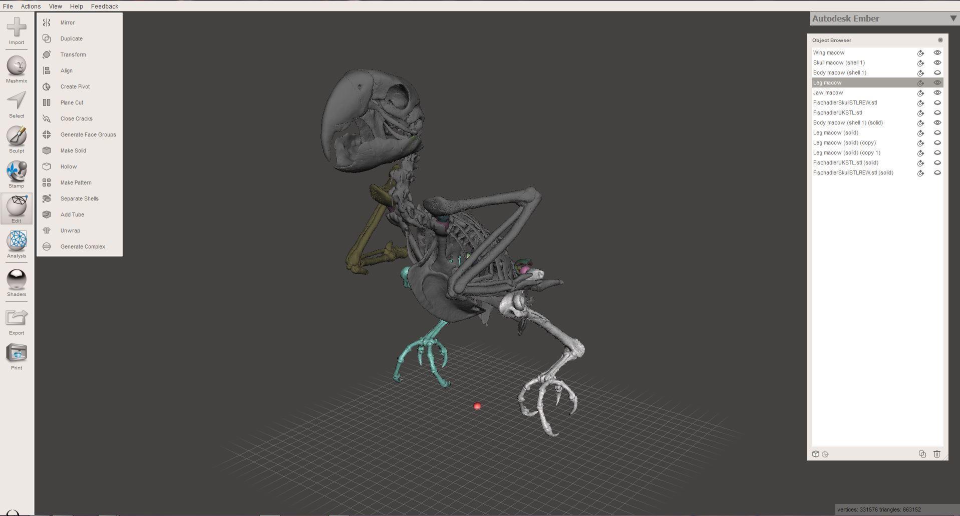Unbenannt.JPG Download STL file Macow Skeleton • 3D printing template, LordLilapause