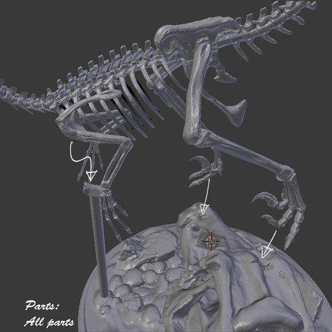15All.jpg Download STL file Velociraptor Skeleton Diorama with T-Rex Skull • 3D printer template, LordLilapause