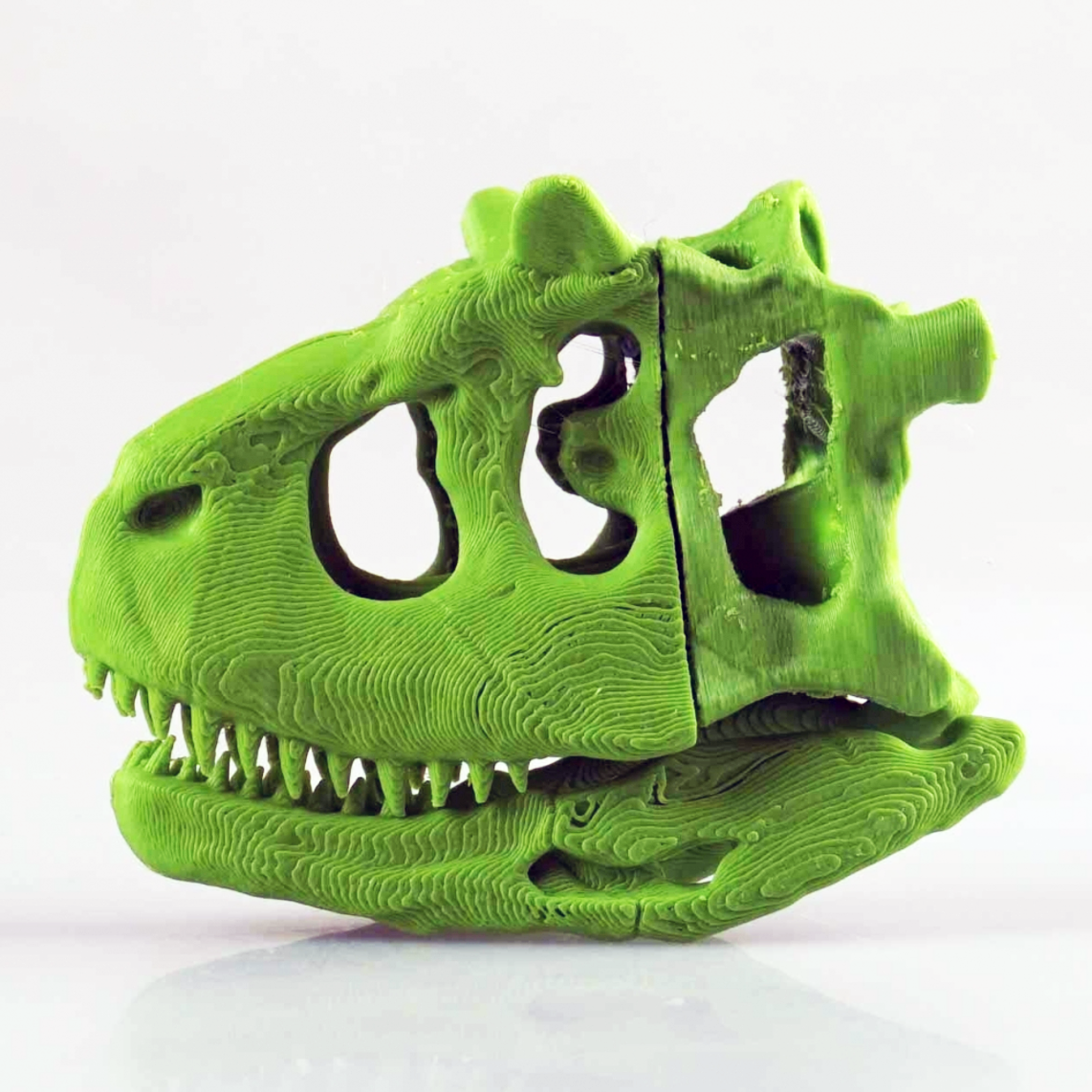 Capture d'écran 2017-03-28 à 15.25.30.png Download free STL file Dinosaur Skull • 3D printing template, LordLilapause