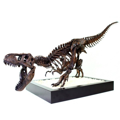 Download free STL T-Rex Skeleton - Leo Burton Mount, LordLilapause