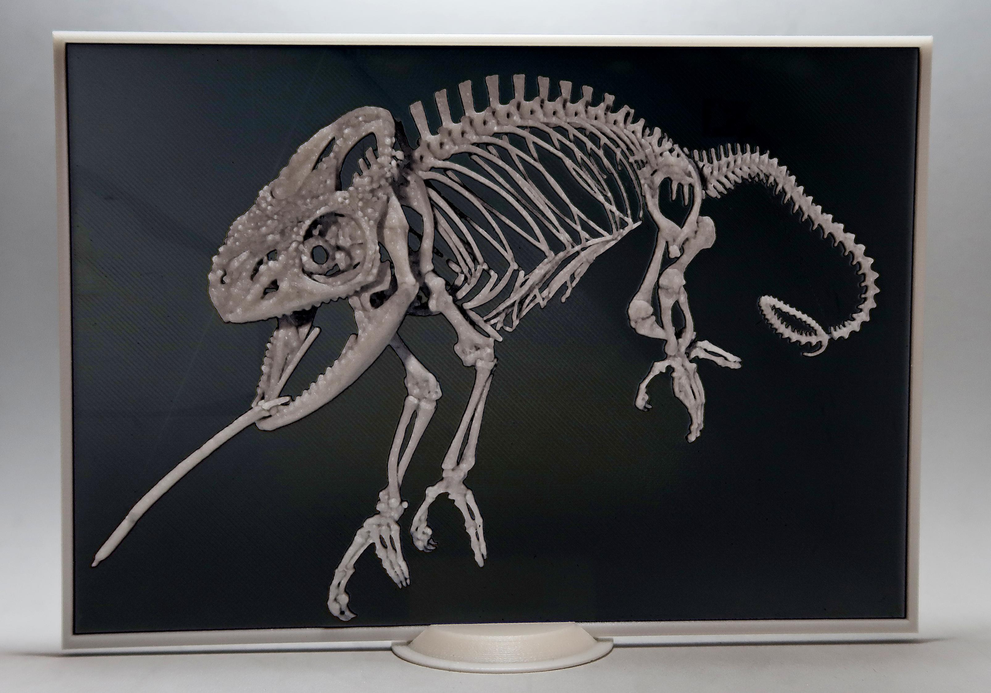 FotoJet10.png Télécharger fichier STL gratuit caméléon 3D • Plan pour imprimante 3D, 3dlito
