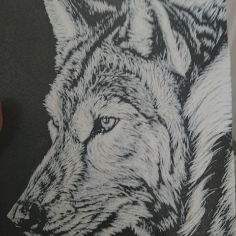 Free 3d Model 3d Drawing Wolf Lobo Cults