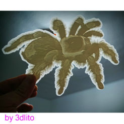 Download free 3D printing templates Tarantula lithophane, 3dlito
