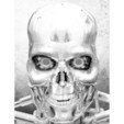 Free 3D printer file 3D Drawing Terminator, 3dlito
