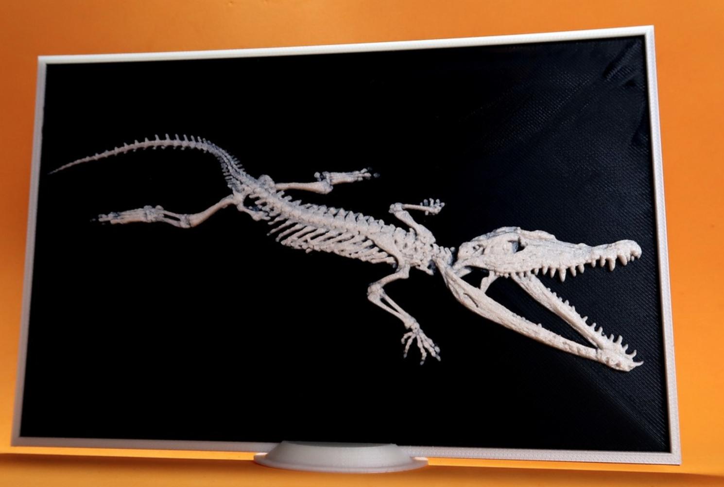 Capture d'écran 2017-11-13 à 11.49.17.png Télécharger fichier STL gratuit Crocodylus 3D • Objet imprimable en 3D, 3dlito