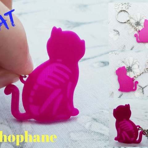 f76ed3419971fb58a5ac428916ae2134_display_large.jpg Download free STL file Cat skeleton keychain lithophane • 3D printing object, 3dlito