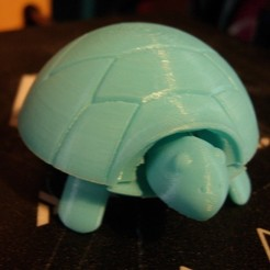 Download free 3D printer model Squishy Turtle, db42