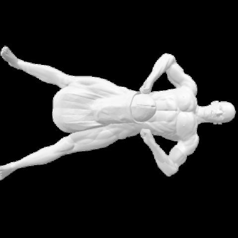 Download STL file Naughty male hook / hanger • 3D printable design, MarcusB