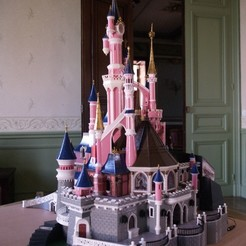 Free 3D printer files Chateau Disneyland Paris with Prusa MK2S MMU (Ed2), Rio31