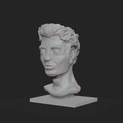 busteHomme.jpg Télécharger fichier STL gratuit Buste d'homme décoratif • Objet pour impression 3D, KernelDesign
