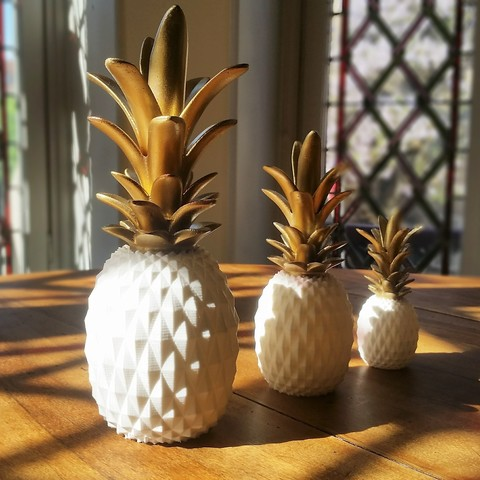 fichier 3d ANANAS, BOUTIN