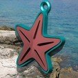 Download free 3D printing models Starfish Charm! (I.e., ScrapPrinting