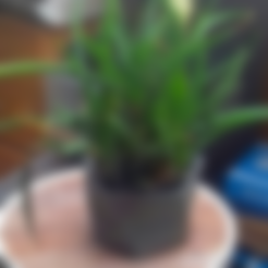 Free Twisted flower pot - wide version. Wide flower pot STL file, Julien_DaCosta