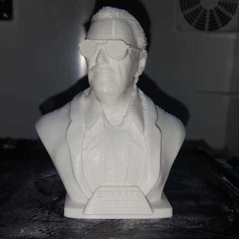 Free 3D printer model Stan Lee Memorial , ToriLeighRhoades