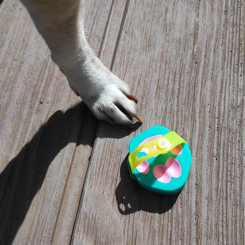 WhatsApp Image 2020-04-28 at 21.48.30 (1).jpeg Télécharger fichier STL gratuit pantoufle pour chien • Plan à imprimer en 3D, PRINTTHINKS