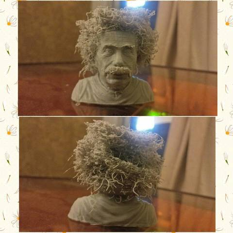 Free 3D printer files Hairy Einstein, GeneralDcruz