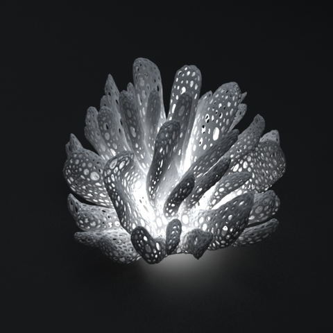 Imprimir en 3D gratis Pantalla Coral, Pratrik