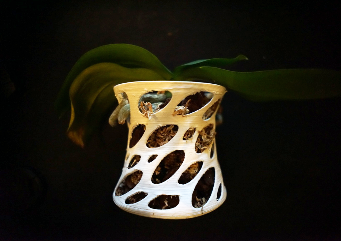 Capture d'écran 2017-05-12 à 10.17.51.png Télécharger fichier STL gratuit Orchid vase • Plan pour impression 3D, Pratrik