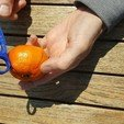 Download free 3D printer model citrus peeler #XYZCHALLENGE, mrj33