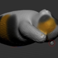 Free STL file Cat 3D printed, orangeteacher
