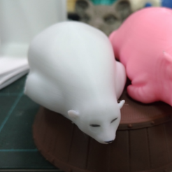 Download free 3D print files polarbear high resolution, orangeteacher