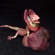 Download free 3D printing models gecko lizard by orangeteacher, orangeteacher