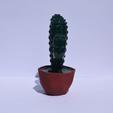 Descargar archivos 3D Cactus polígono / vector + maceta, Mak3Me
