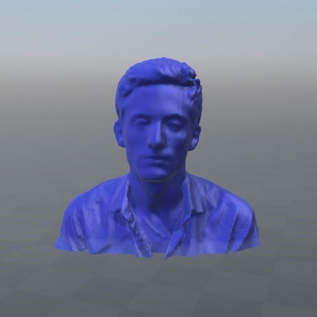 "Capture1.JPG Download OBJ file Character bust: ""Wolfatmospheric"" • 3D printer object, Mak3_Me_Studio"