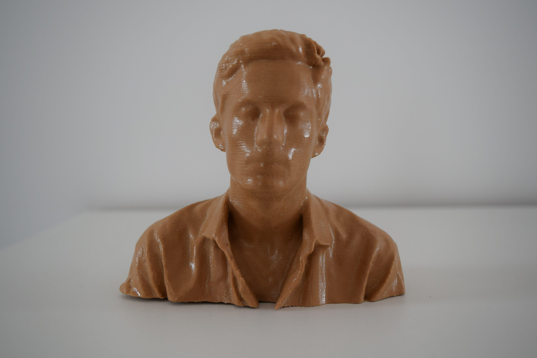 "DSC_0442_resultat_resultat.jpg Download OBJ file Character bust: ""Wolfatmospheric"" • 3D printer object, Mak3_Me_Studio"