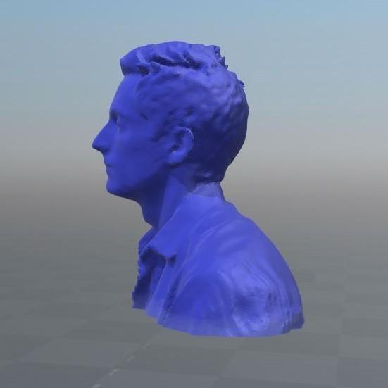 "Capture2.JPG Download OBJ file Character bust: ""Wolfatmospheric"" • 3D printer object, Mak3_Me_Studio"