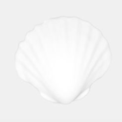 Coquillage1.png Download STL file Ashtray - Shell • 3D print design, Mak3_Me_Studio
