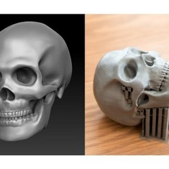 Download free STL file Skull, Taran3D