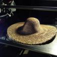 Impresiones 3D gratis Soporte de la joyería del sombrero del voronoi, unwohlpol