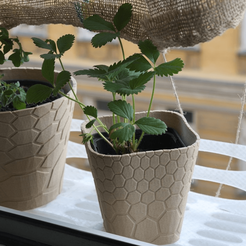 Free 3D print files honeycomb planter #1, unwohlpol