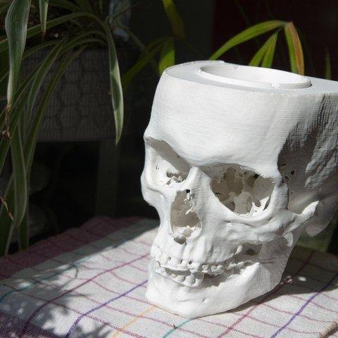 Descargar Modelos 3D para imprimir gratis cenicero de cráneo, unwohlpol