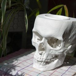 Download free 3D printer designs skull ashtray, unwohlpol