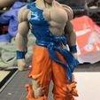 Télécharger fichier STL gratuit Le Dragon Ball Z de Blue Goku, Gatober