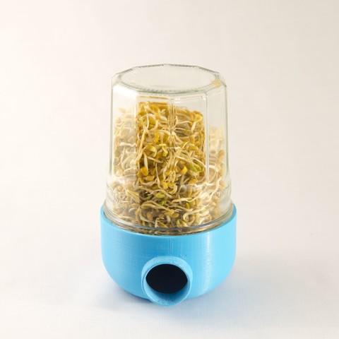 171203-EOS-066.jpg Télécharger fichier STL Sproot - Germoir à graines • Design pour imprimante 3D, clemgerm