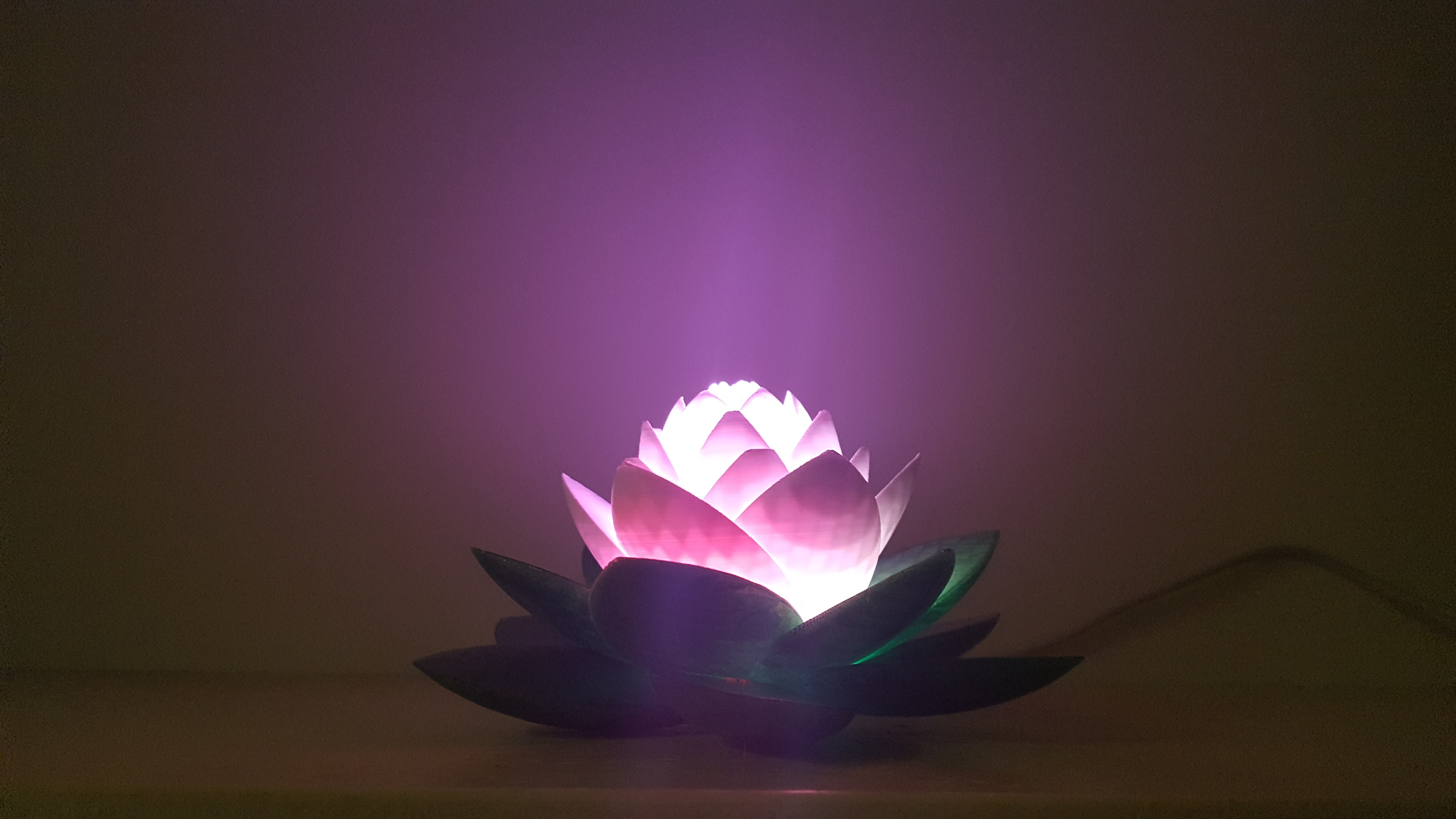 20190703_154110.jpg Télécharger fichier STL gratuit Lampe Lotus #POLYMAKERCHALLENGE • Modèle pour impression 3D, Job