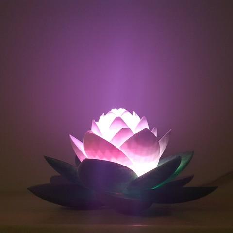 20190703_154110.jpg Download free STL file Lotus Lamp #POLYMAKERCHALLENGE  • 3D print object, Job